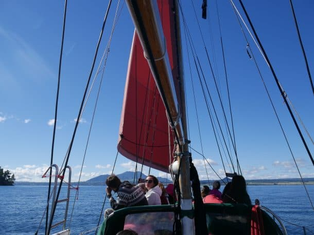 If Stray passengers go sailing, is it called 'Strayling'?