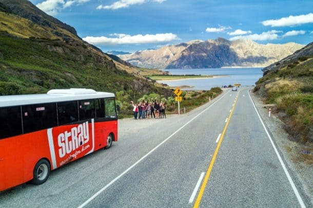 Explore New Zealand on a Stray bus tour